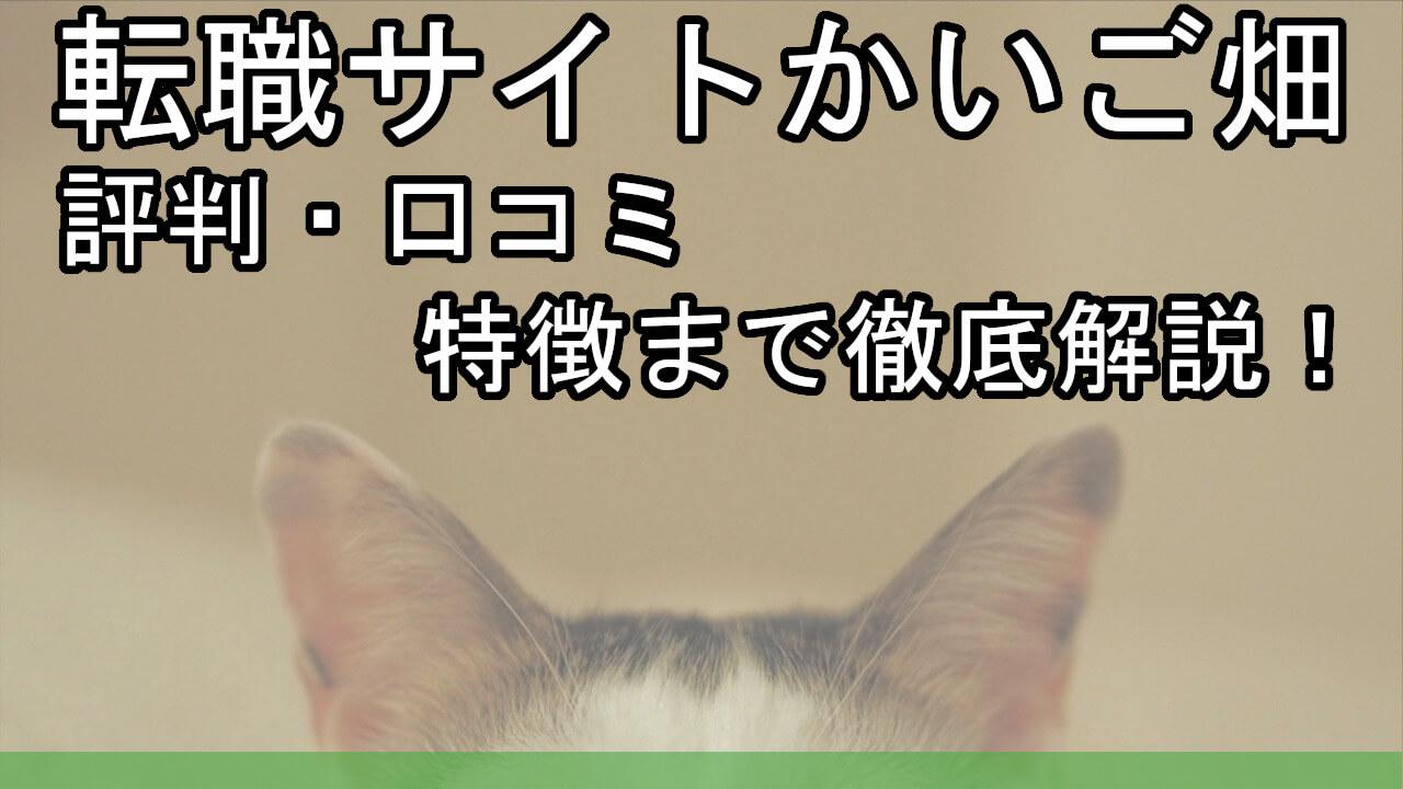 転職サイトかいご畑とは?【評判・口コミ・特徴まで徹底解説!】1