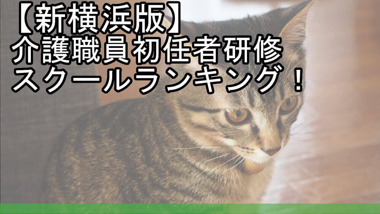 【新横浜版】介護職員初任者研修スクールランキング!安くておすすめは?