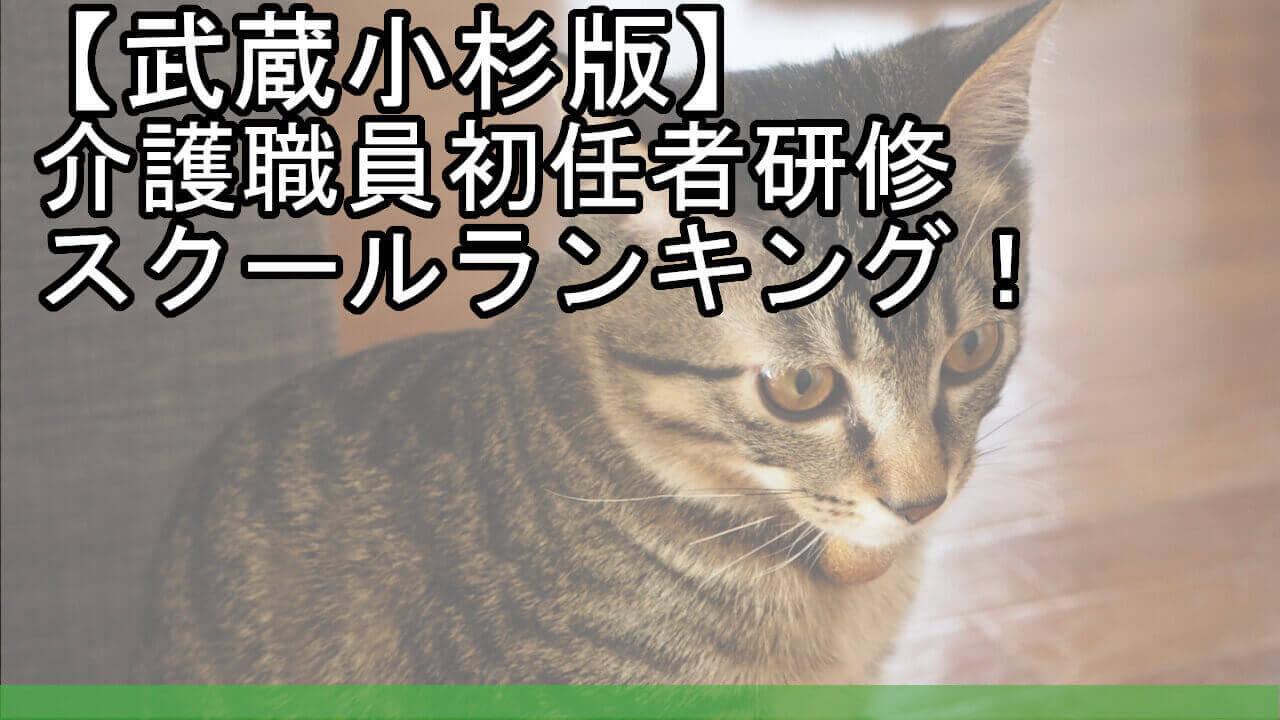 【武蔵小杉版】介護職員初任者研修スクールランキング!安くておすすめは?
